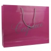 Gloss Laminated Paper Fashion Bag with rope handles