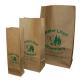 Paper Prescription Bags - Brown Kraft