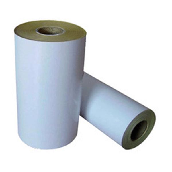 PE Coated Paper Rolls