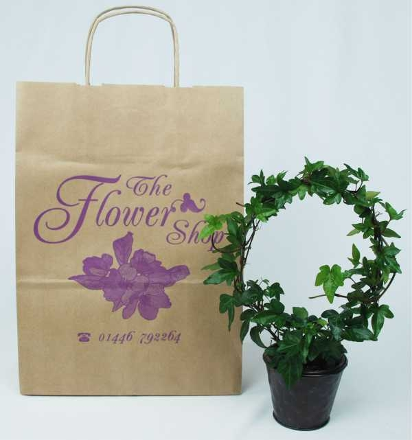Paper Carrier - Twisted Handle - Florist